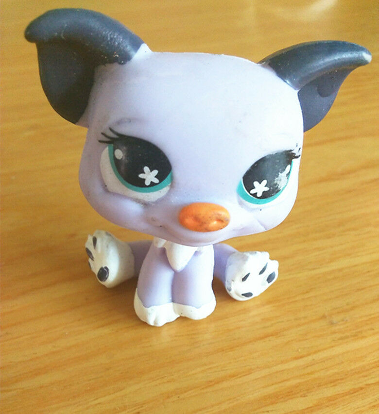Animal Toys For Boys : Littlest pet shop lps cw cute light purple animal toys
