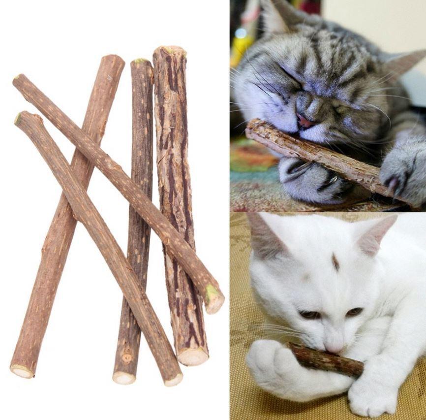 Katzenminze Kätzchen Kauen Stick Catnip Molar Spielzeug Futter Zahnpflege