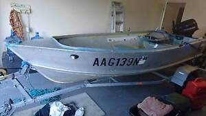 12ft Tinnie / Tinny 10hp Evinrude Helensvale Gold Coast North Preview