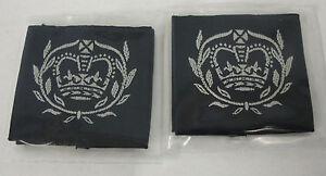 RAF-Cadet-Warrant-Officer-Rank-Slides-PAIR