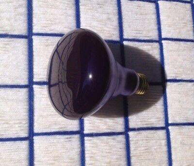 (NEW Blacklight TRUE SPOT 65 WATT 65w reptile basking NIGHT LIGHT BULB BR30 UV )