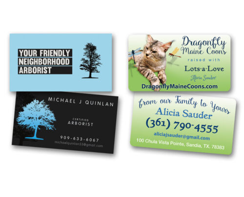 Graphic Design for BUSINESS CARDS - Will design a unique Business Card