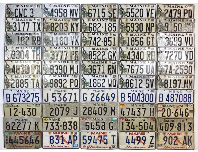 Maine Craft License Plate LOT OF 50 PLATES Mix Of Old & New Chickadee Lobster (1