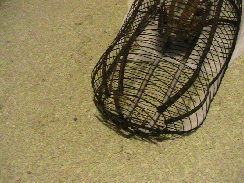 vintage  antique metal  box trap no kill rat squirrel, chipmonk