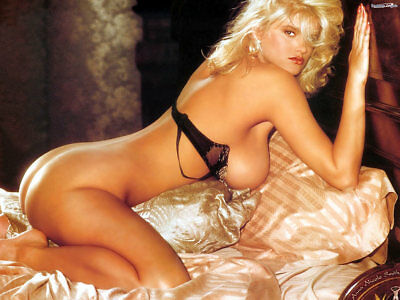 Anna Nicole Smith Sexy Blonde In The Bed 8X10 Picture Celebrity Print