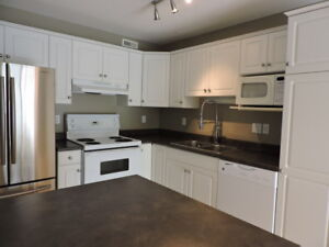 3 Bedroom Townhouse in Silverspring with finished basement