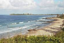 House Sitter - Professional House/Pet Sitter on Sunshine Coast Maroochydore Maroochydore Area Preview
