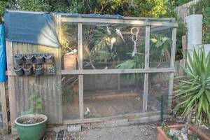 ($1700 ono) COMPLETE Breeding Setup + Tons of Birds Kenmore Brisbane North West Preview