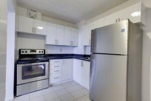 1 Bedroom Apt at 50 governors road
