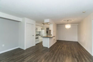 **Luxury Apartment and in the heart of the city!** 482J102