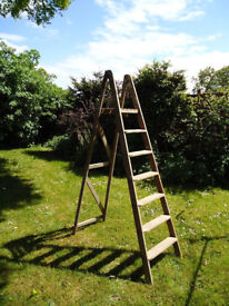 Original old wooden ladder ideal for display or shabby chic