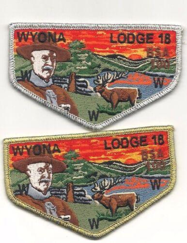 oa boy scout wyona lodge 18 gold & silver set 100 annv.