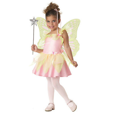 Costume 2pc Sweet Heart Fairy Dress & Wings Pink Green Toddler 2-4 NIP