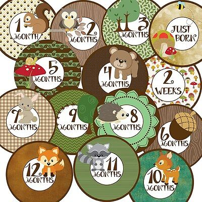 14 Woodland Forest Animals Baby Boy or Girl Unisex Monthly Milestone Stickers