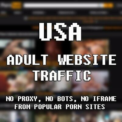 Adult Website Traffic 100  Human  5 000 Real Porn Surfers