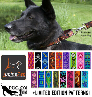 Lupine Combo Dog Training Collar. Martingale, Limited Slip Choker.  M-XL 1