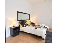 Stylish 1-bedroom flat to rent in Finsbury Park