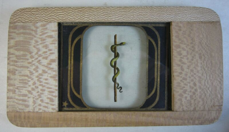 Antique Magic Lantern Glass Slide Odd Fellows THE SERPENT & STAFF Wood Frame