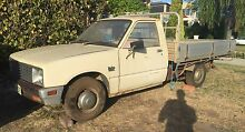1981 Holden Rodeo Ute/ Isuzu diesel with Aluminium Tray Mount Pleasant Melville Area Preview