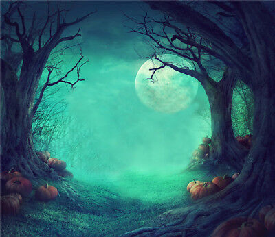 Halloween Spooky Forest Dead Trees Pumpkins Vinyl Studio Photography Background - Halloween Spooky Backgrounds