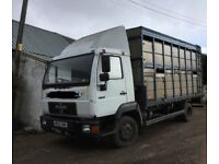 7.5 tonne lorry with cattle container