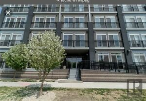 Looking for a river view condo to rent along Tache Ave.