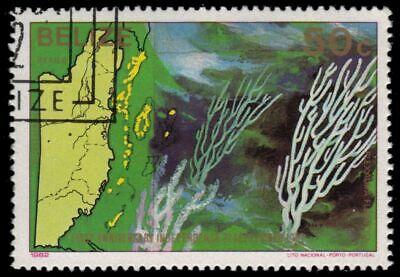 "BELIZE 648 (SG696) - Purple Candelabra Coral ""Plexaura flexuosa"" (pa54975)"