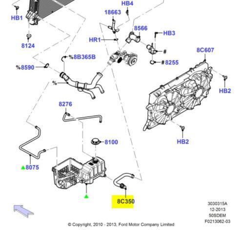 FORD OEM 11-14 F-150 5.0L-V8 Radiator-Hose BL3Z8C350A | eBay