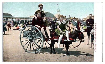 Early 1900s A Donkey Party, Atlantic City, NJ Postcard - Party City Nj