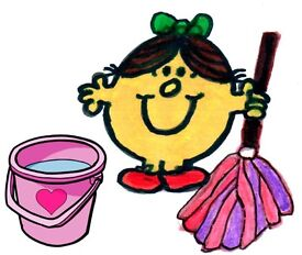 Happy Experienced Domestic Cleaner Needed £8.50/9 per hour