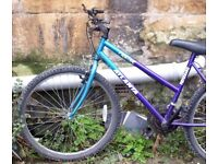 """15 Speed Small Adults Mountain Bike 19"""" frame shamano gears - great condition 26"""" wheels"""
