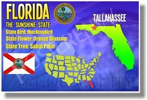 Florida geography new u s state travel poster ebay for Free travel posters for teachers