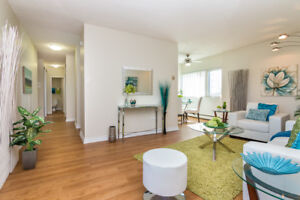 Amazing Bachelor Suite near Chinook Center!