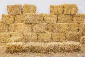 Straw for sale!