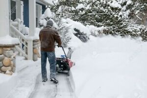 CAPITAL CITY SNOW REMOVAL PATIOS-DRIVEWAYS