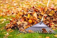 Raking services for this fall - booking now