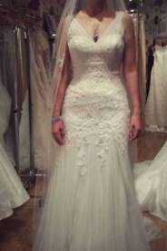 Size 12 Zandra Pronovias dress