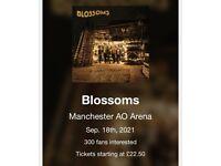 Blossoms Concert ticket (2) Manchester 2021
