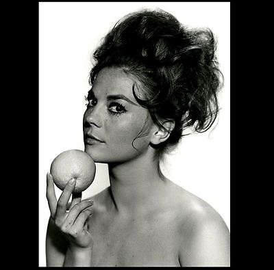 Natalie Wood Publicity PHOTO Actress Rebel Without a Cause, West Side Story Star