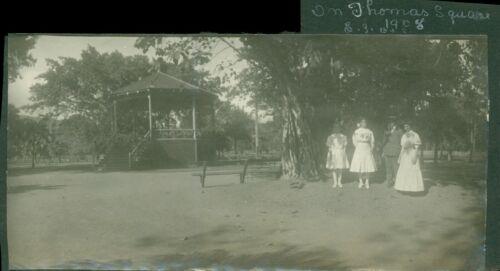 1908 Thomas Square Park, band shell, banyan tree Honolulu Hawaii 3x7 Photo
