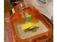 Dwarf Hamster with cage for sale