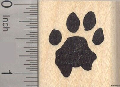 Lion Paw Print Rubber Stamp D11015 WM big cats, africa and asia lions ](Lion Paw Print)