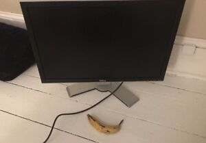 Large Dell Monitor