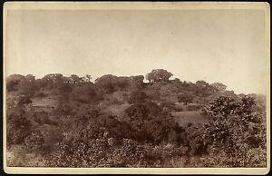 India-Maharashtra-State-27-Chikalda-From-below-Mr-Reynolds