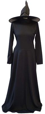 HALLOWEEN/Wicked/Wizard of Oz  BLACK WICKED WITCH COSTUME & HAT All Adult Sizes - Halloween Costumes All Black