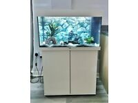 Juwel Rio 125 LED fish tank aquarium & cabinet