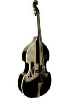 Double bass player available Maitland Maitland Area Preview