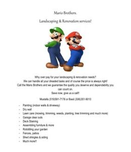 Mario Brothers. Landscaping & Renovation Services!