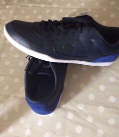 man lacoste shoes