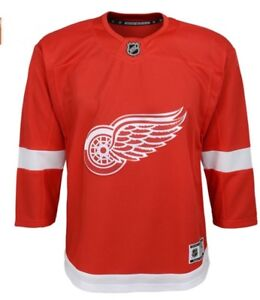 Detroit  Red wing kids jersey
